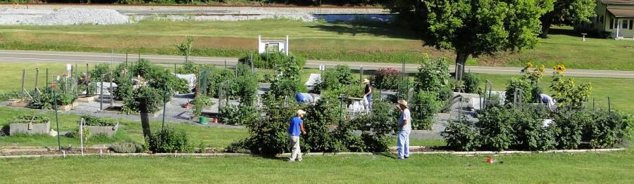 Northeast Tennessee Master Gardener Association - Church Hill Senior ...